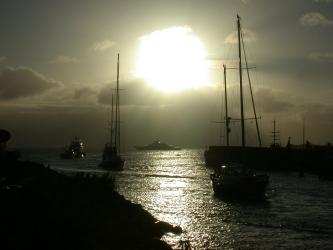 safeharbor